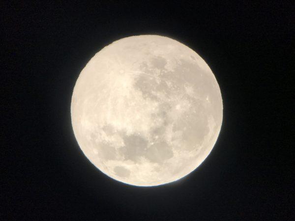 第23回 エジプトの月